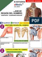 Anatomía Día 02-Ipana