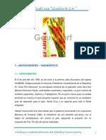 245286389-GUABIRA-ANALISIS.docx
