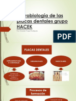 placa bacteriana oral