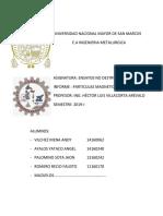 Informe Ensayo Particulas Magneticas