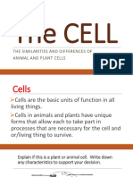 Animal Plant Cells
