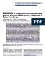 Health Effects of Occupational Lead Exposures among Informal Automobile Repair Artisans