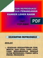 Penyuluhan Iva Dan Kespro 2013