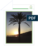 Page 001 Palms