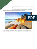 Documento (9.docx