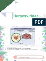 Herpesviridae -.pptx