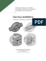 Calc Numerico - Setembro2013 - LNA