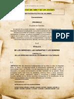 NINO EN LA CONSTITUCION.pdf
