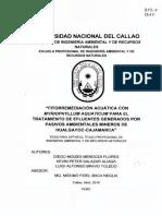 Diego_Tesis_títuloprofesional_2016.pdf