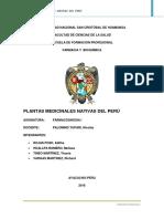PLANTAS_MEDICINALES_NATIVAS_DEL_PERU_FAR.pdf