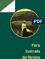 Flora ilustrada del Páramo de Chingaza
