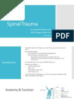 Spinal Cord Injury Alexi