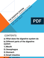 Final Presn .Digestive System 2