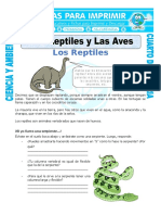26 Ficha Los Reptiles y Las Aves Para Cuarto de Primaria