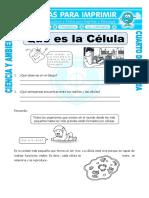 3 Ficha Que Es La Celula Para Cuarto de Primaria