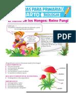 Reino-Fungi-para-Cuarto-de-Primaria.pdf