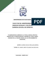 Vulneracion Del Derecho a La Tutela Judicial Efectiva Previsto en La Constitucion de La Republica y en El Codigo Organico de La Funcion Judicial en Los Procedimientos Coactivos