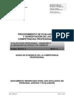 GUÍAS DE EVIDENCIA DE LA COMPETENCIA PROFESIONAL