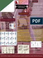 Fundamentos Del Ejercicio Físico
