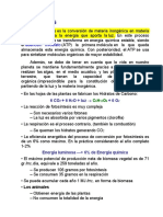 9a-Biomasa