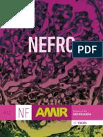 NEFRO _ Índices _ 11.ª Edición