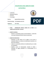 173207970-Informe-Final-Mulalo.pdf
