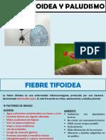 Fiebre Tifoidea y Paludismo