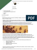 Oxidação, Corrosão e Ferrugem - Conceitos e Remoção