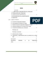 Estudio de La Seguridad Ciudadana y El Servicio de La Pnp de La Ciudad de Yungay (1)