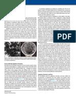 Defining-Asphaltenes.pdf