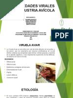 ENFERMEDADES AVICOLA-1.pptx