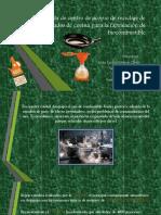 Propuesta de Centro de Acopio de Reciclaje De