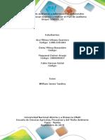 Paso 2_Seleccionar Empresa y Realizar El Plan de Auditoría_Grupo_358033_22 (1)