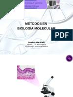 8.Charla congreso HT biologia molecular.Martinelli.pdf