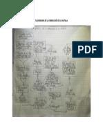 Flujograma de la Fabricacion de la Natilla.docx