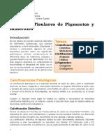 Documento Pigmentos y Minerales 20191