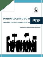 1. Princípios do Direito Coletivo do Trabalho.docx