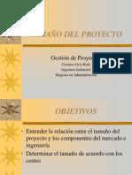 c4-Tamaño Del Proyecto
