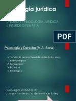 juridica unida 1