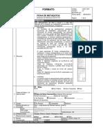 FORMATO-metadatos-Metalogenetico.docx
