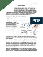 Clase 1 Retina A