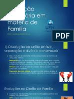 Proceds de Jurisd Voluntária Em Matéria de Família e Sucessões