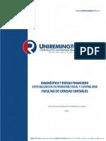 Modulo Diagnostico y Riesgo Financiero_2016.DOCX