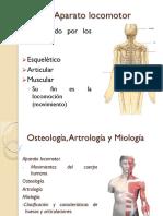 3.Osteología General