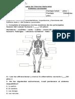 275192320-Prueba-Sistema-Locomotor.pdf
