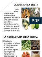 99344989-La-agricultura-en-el-Peru.pdf