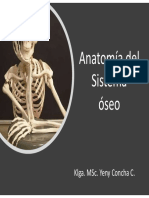 Clase 2- Sistema Oseo. 2019pptx_compressed-2