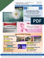 Dusk Newsletter 2