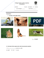 Esame Italiano2.pdf