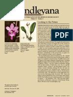 Bulbophyllum Story